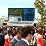 Caulfield Cup Young Members